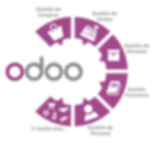 Odoo ERP. Kaf Consulting