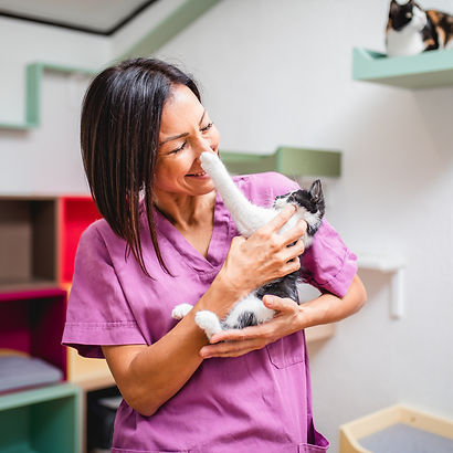 Female worker working in animal shelter