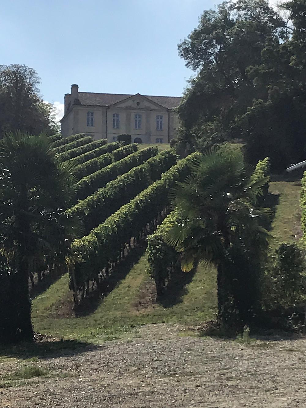 Wine trip to Chateau Viella
