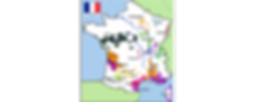 FRENCH WINE AREA.png