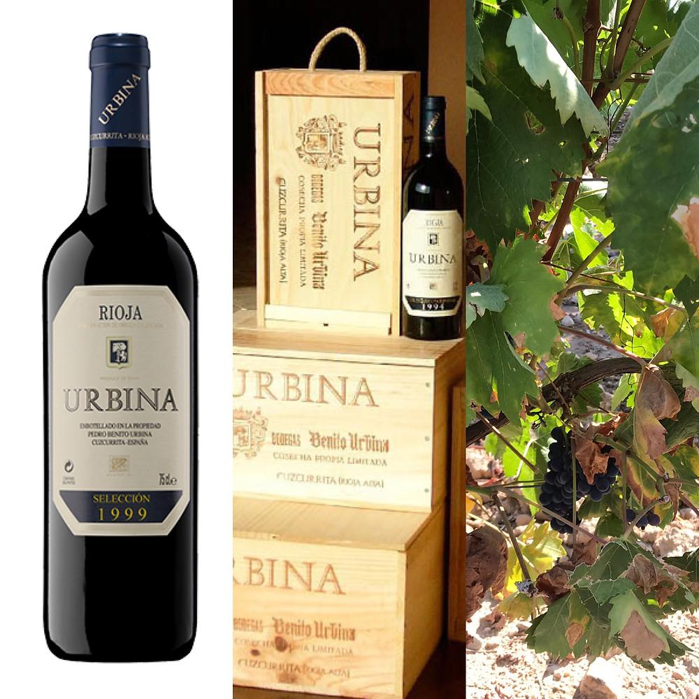 Wine tasting at Urbina Rioja Spain