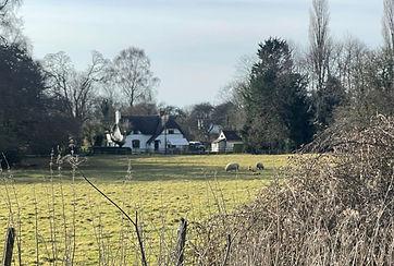 Micheldever Cottage