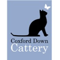 Coxford Down Cattery