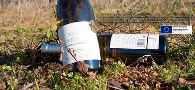 VIA bottles.jpg