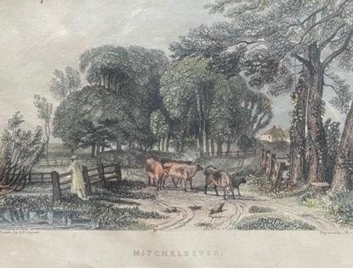 Micheldever Parish