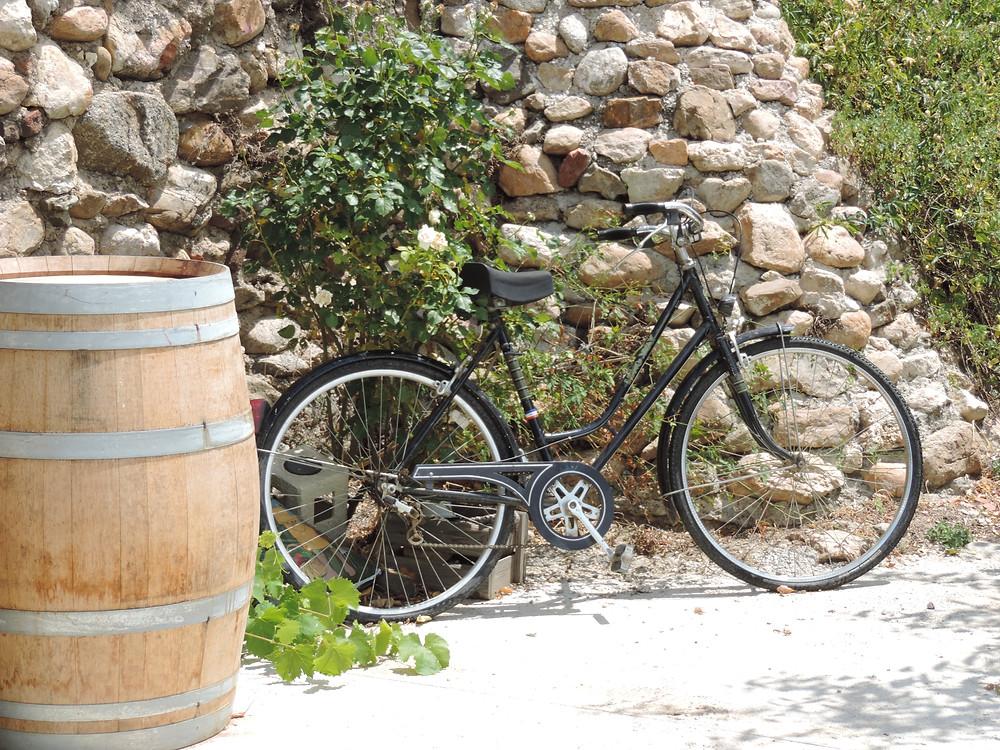 Wine and food blog