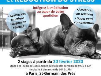 Méditation et Réduction du stress (MBSR), dates des stages d'Hiver 2020