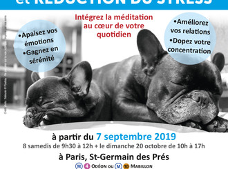 Méditation et Réduction du stress - Stage MBSR du 7 Septembre 2019