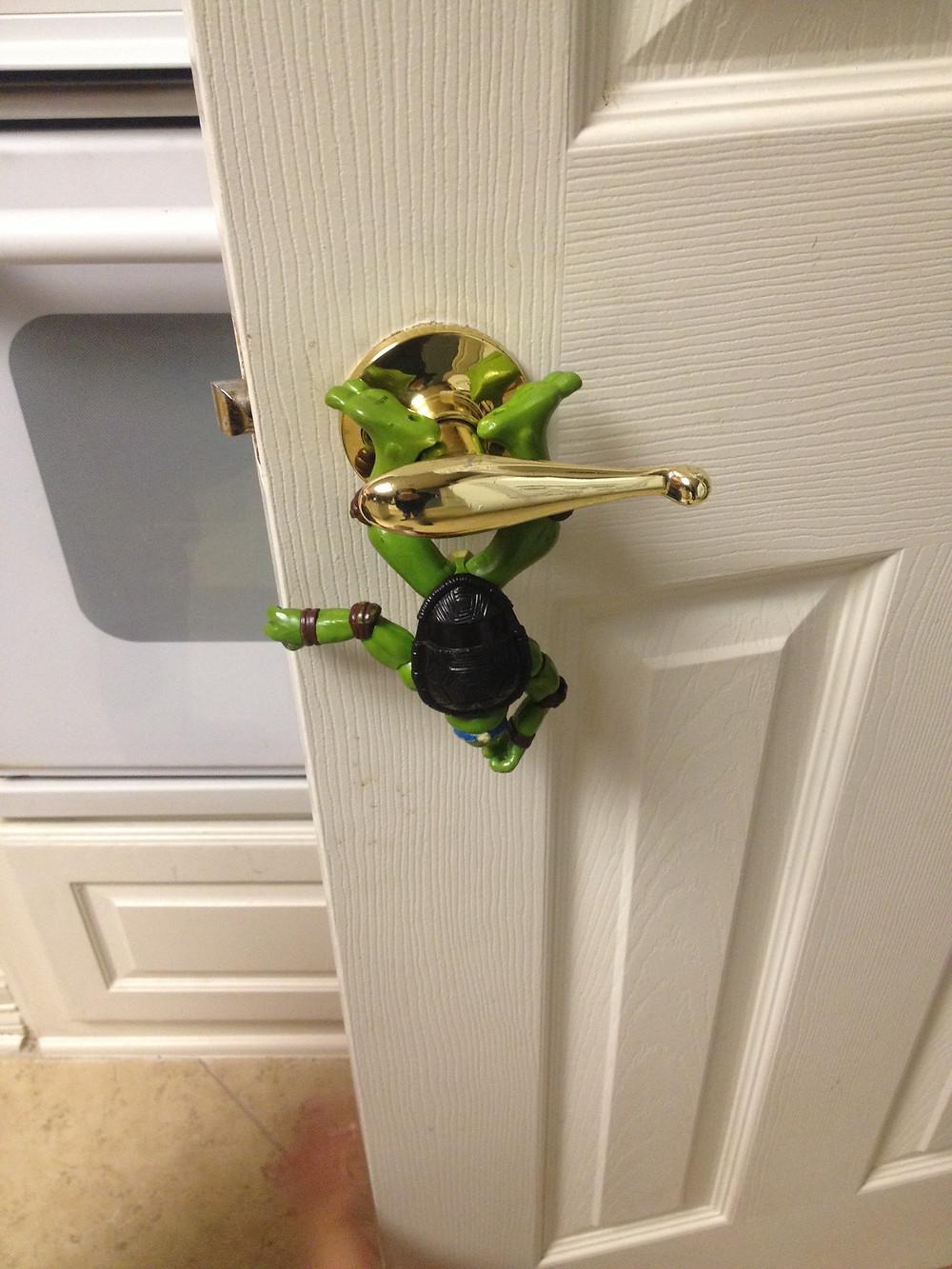 turtle door.JPG