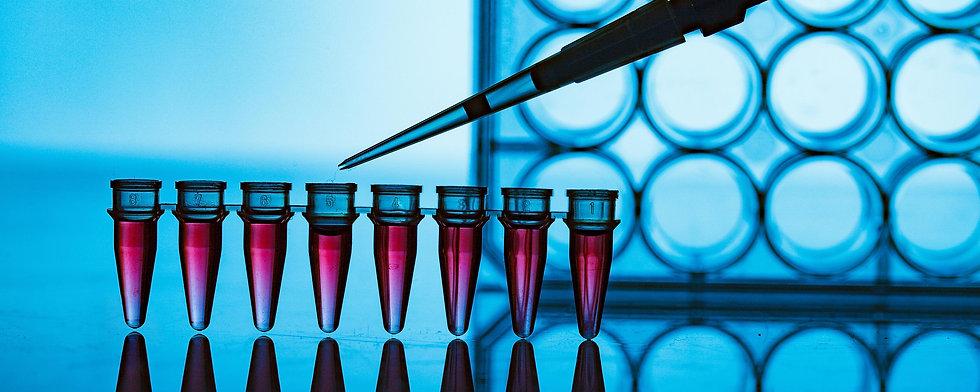 PCR strip in genetic laboratory.jpg