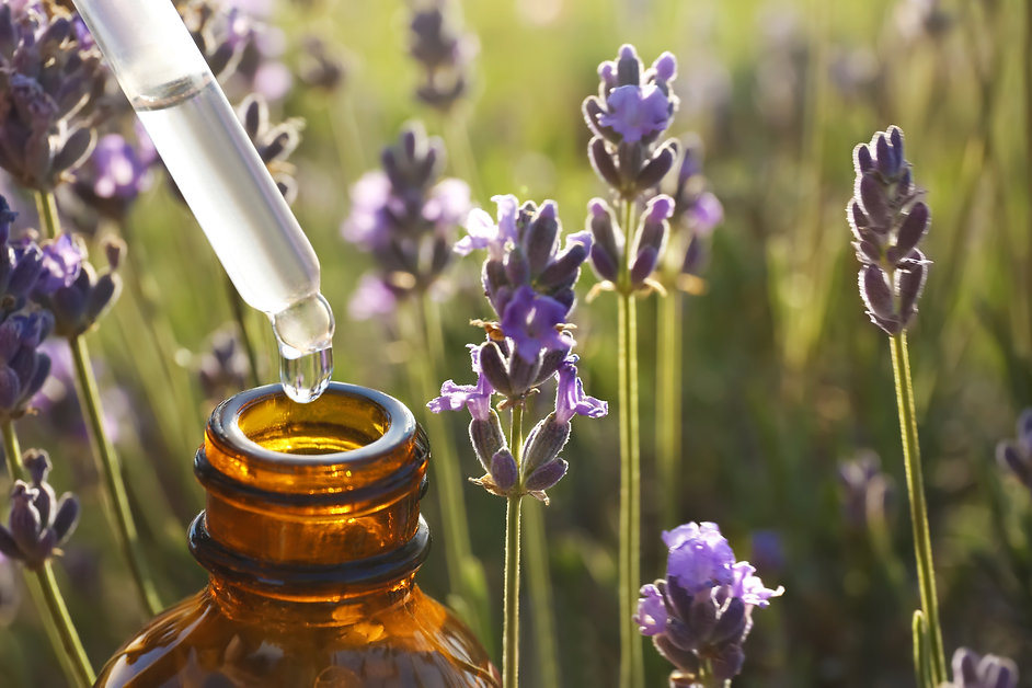 Dropper with lavender essential oil over