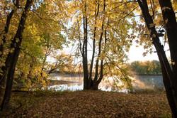 automne2-2