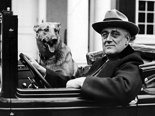 FDR's Four Freedoms in a Divided America