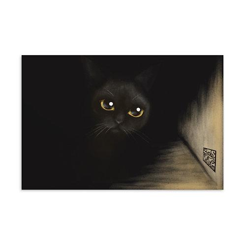 Cat from the Dark Standard Postcard