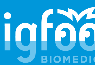 Bigfoot: Bionic Pancreas Development