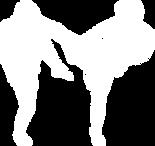 TH Kick Icons Web.png