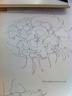 Loose drawing of foliage
