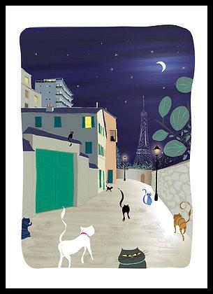Rue Berton, quelques chats sortant dîner