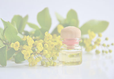 cosmetic-oil-3868594_1920_edited.jpg
