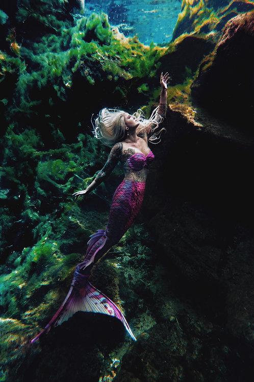 Spring Siren