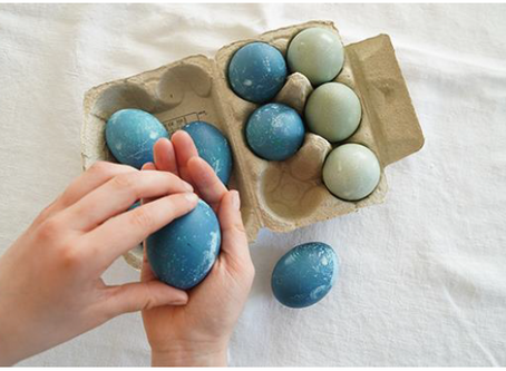 Mittelstufe/Ganze Familie: Aus Rot wird Blau und Grün... zartfarbige Eier färben