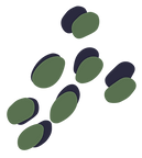 THL-Spots-Sage.png