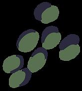 THL-Spots-Sage.png