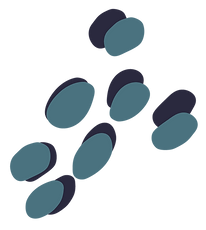 THL-Spots-Teal.png