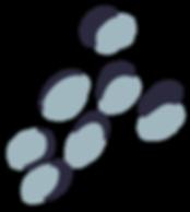 THL-Spots-SlateBlue.png