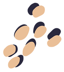 THL-Spots-Eggshell.png