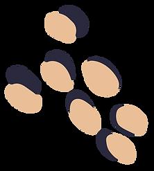 THL-Spots-Eggshell_edited.png