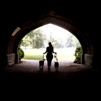 silhouette of a girl with two dogs walking through a tunnel brdige into the park