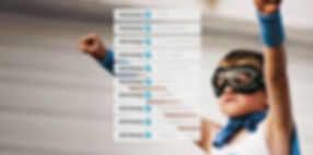 Lucidity Intranet reinforces brand identity