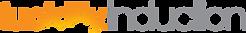 lucidity induction logo