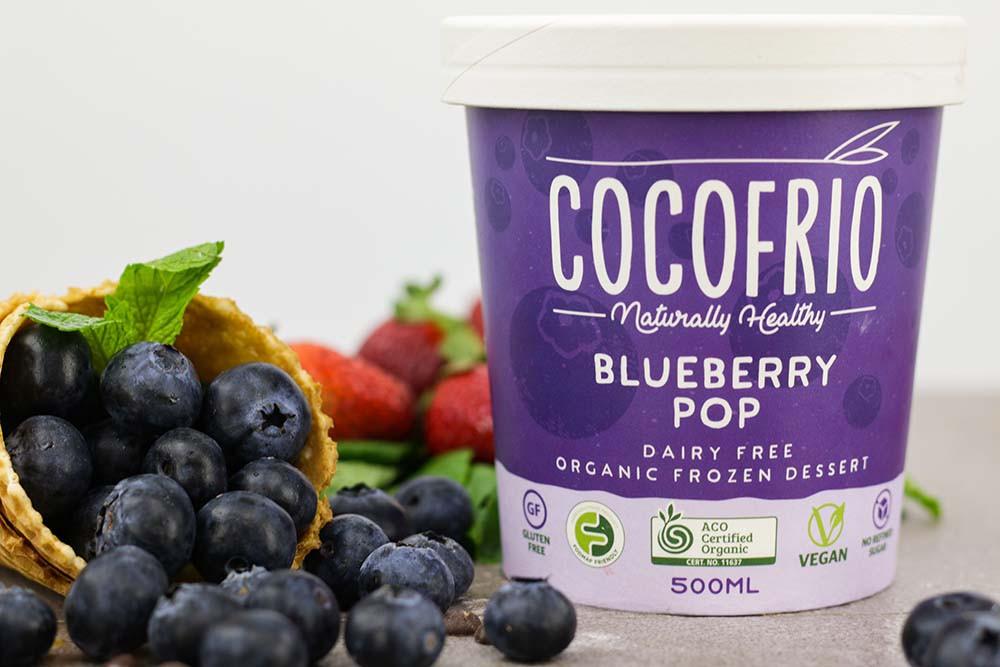 Cocofrio-Blueberry-Icecream.jpg