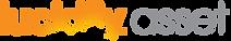 lucidity asset logo