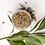 Thumbnail: Herbal Facial Steam