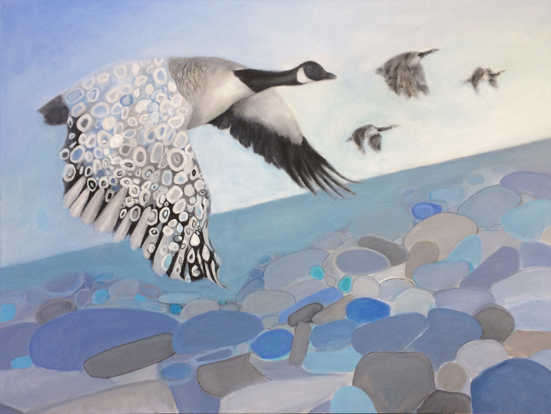 "Canada Goose. acrylic on canvas, 36""x48"""