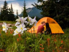 colorado camping engagement photographer