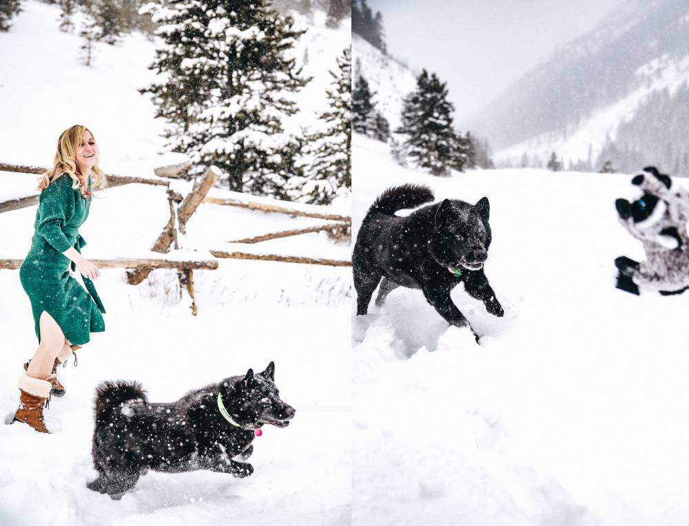 winter engagement photography with dog
