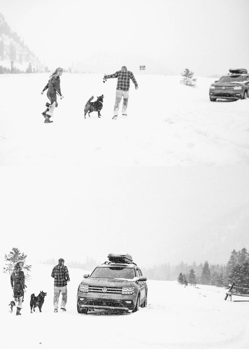 colorado winter engagement photos with a dog