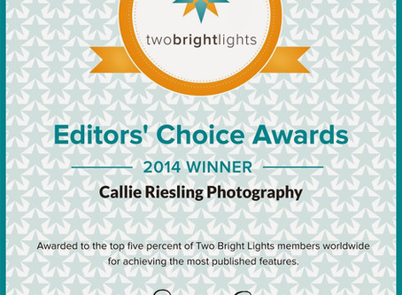 2014 Two Bright Lights Editor's Choice Awards - Colorado Wedding Photographer
