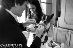 downtown denver wedding photographer - destination wedding photographer