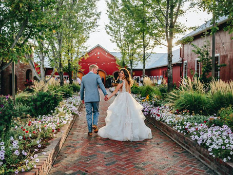 Jared + Stephanie - Crooked Willow Farms Wedding - Part Two