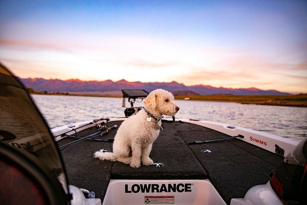 Colorado Fishing Session