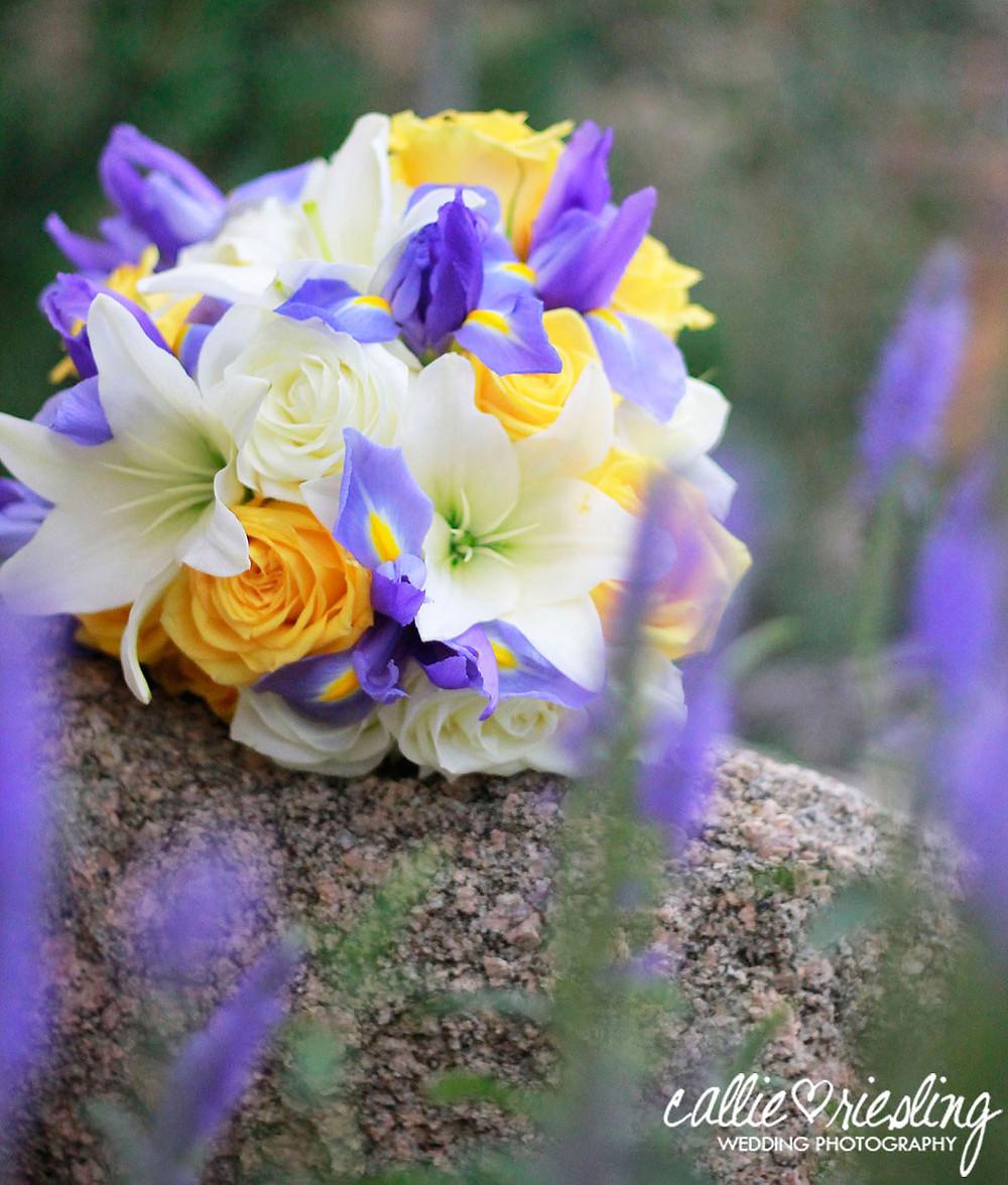 Pinery Colorado Springs Wedding Photographer