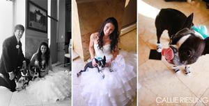 denver wedding photographer - destination wedding photographer