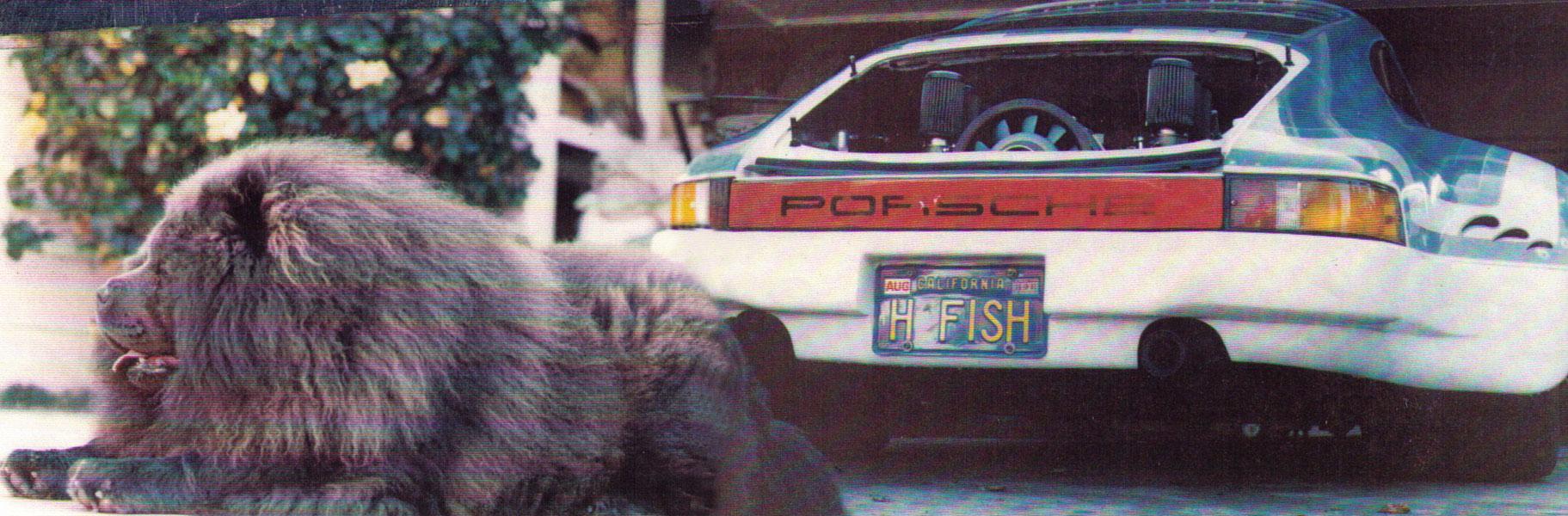 First ever chopped 911 Porsche