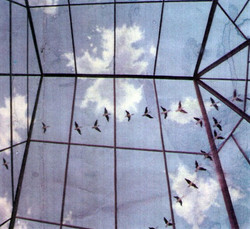 1992  Ceiling mural 7 x 5 metres