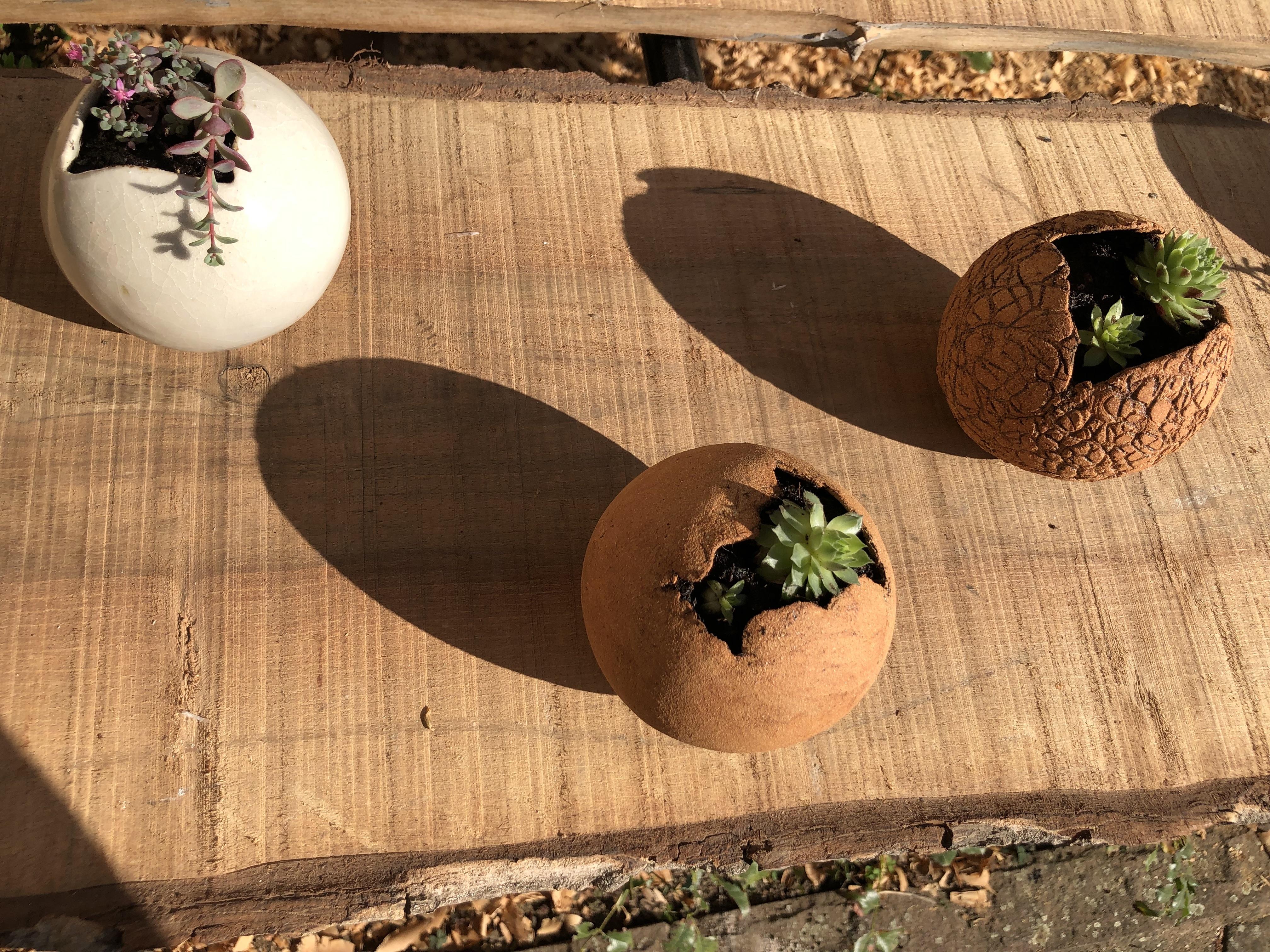 Sphères végétalisées